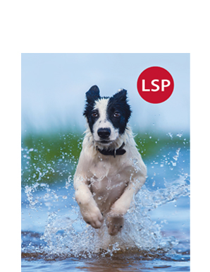 lsp catalog cover image